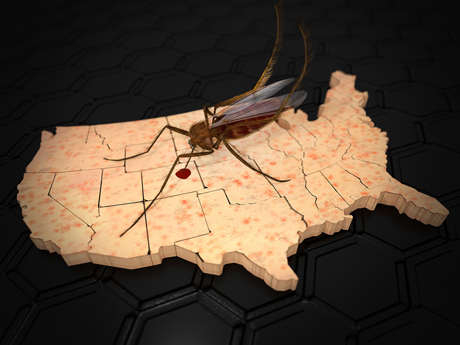 mosquito illustration superimposed on map of U.S.